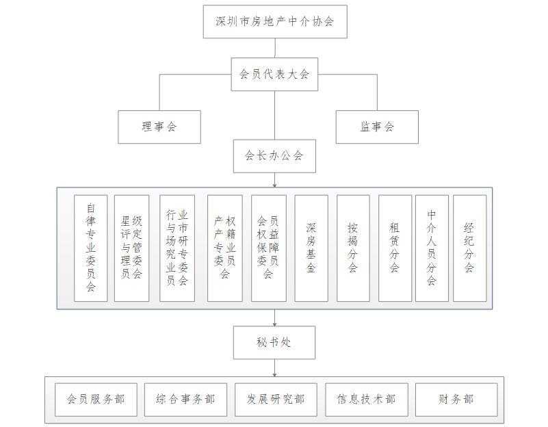 深圳市房地产中介协会组织架构图片